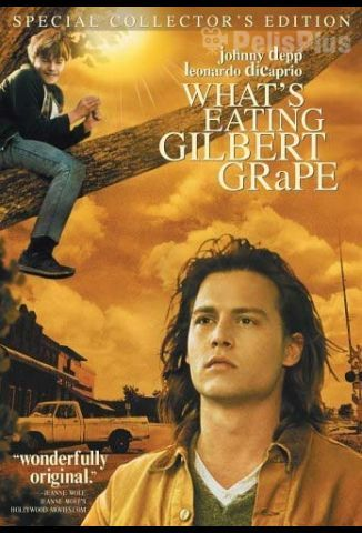 Pelisplus ¿A quién ama Gilbert Grape?